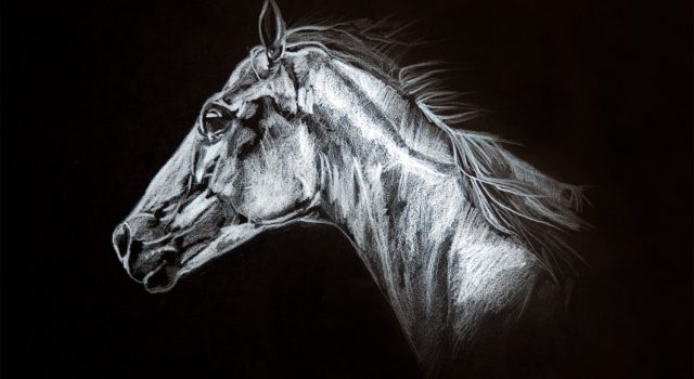Sak_Horse_01